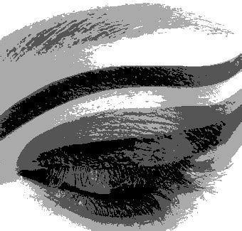 Grayscale Photo Effect Generator - Online grayscale image